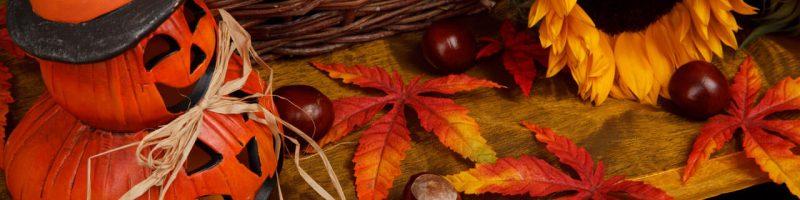 halloween-autumn-theme-11287576365WuEn